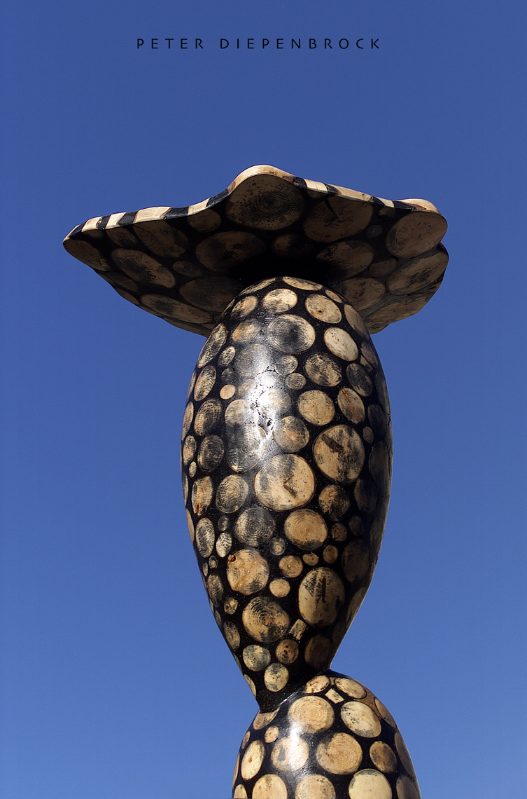 Mushroom Wood Mosaic sculptures in wood and resin by Peter Diepenbrock photo by Kimberly Holcombe